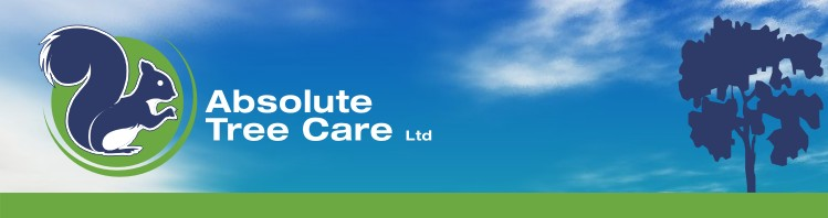 Absolute Tree Care Ltd Limited